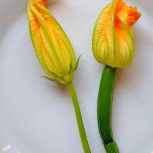 Kwiaty Cukinii W Cieście Naleśnikowym, żółte Kwiatki Na Talerze. Zapraszamy.