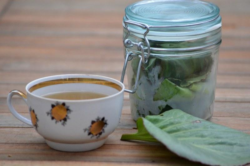 Herbata Z Fermentowanych Liści Bergenii - Oczywiście! Czigirskij Czaj Vel Mongolska Herbatka