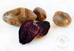 Fioletowe ziemniaki truflowe