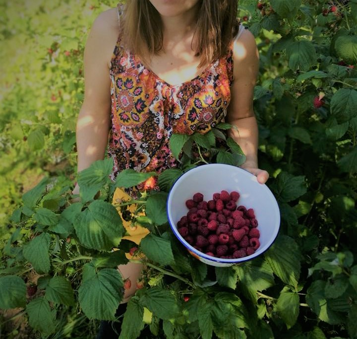 Owoce Maliny – Pielęgnacyjna Moc Owoców.